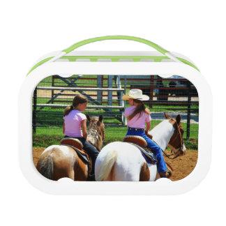 Imagen de dos caballos de montar a caballo jovenes