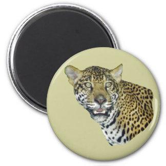 Imagen de Jaguar Imán Redondo 5 Cm