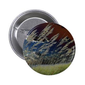 Imagen de la avena del mar de Solarized en la play Pins