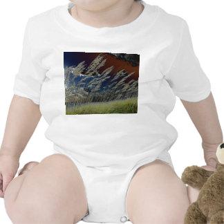 Imagen de la avena del mar de Solarized en la Trajes De Bebé
