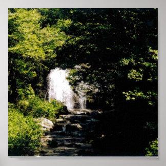 Imagen de la cascada posters