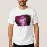 Imagen de la constelación camisas