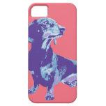 Imagen de la diversión de mascotas en una variedad iPhone 5 Case-Mate fundas