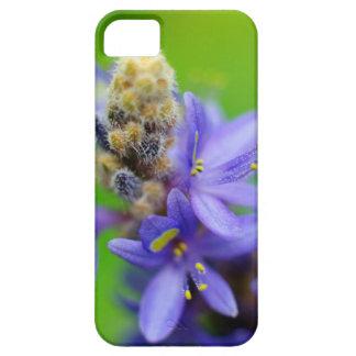 Imagen de la flor de Dave Lee del caso de IPhone 5 iPhone 5 Fundas