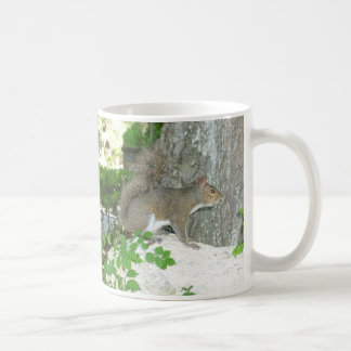 Imagen de la foto de la ardilla taza de café