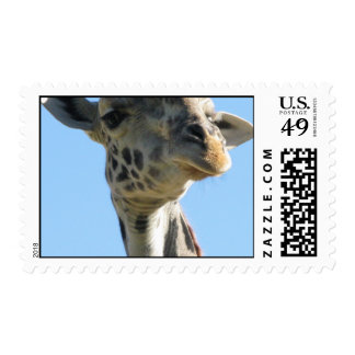 Imagen de la jirafa sellos