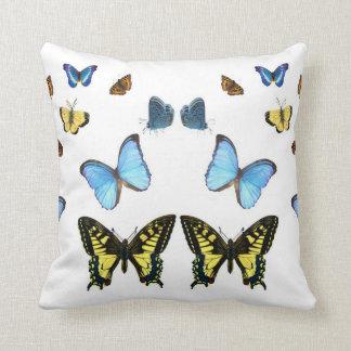 Imagen de la mariposa para el almohada