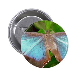 Imagen de la mariposa pins