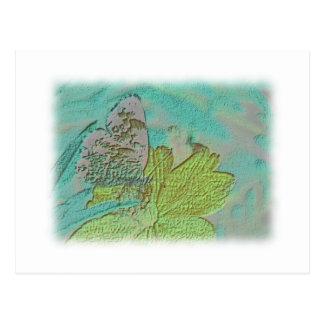 Imagen de la mariposa postales