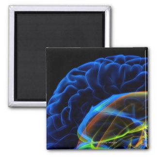 Imagen de la radiografía del cerebro imán cuadrado