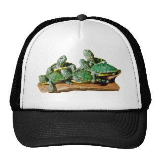 Imagen de la tortuga gorros bordados