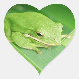Imagen de los pegatinas de una rana arbórea colcomanias de corazon personalizadas