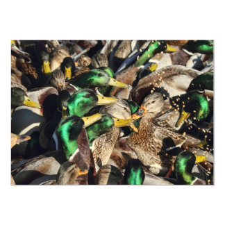 """Imagen de patos en una muchedumbre invitación 5"""" x 7"""""""