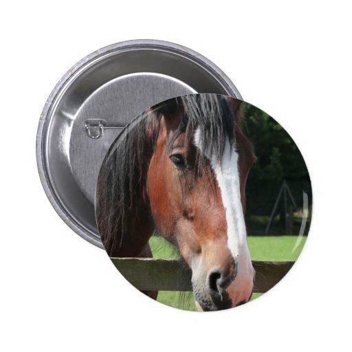 Imagen de un botón redondo del caballo cuarto