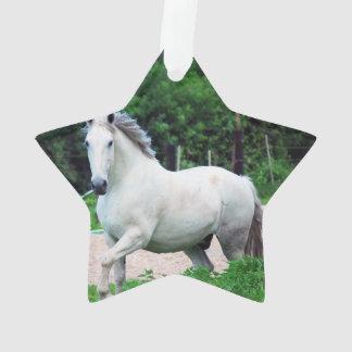 Imagen de un caballo blanco que corre en The Field