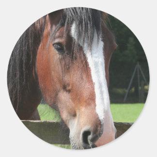 Imagen de un pegatina cuarto del caballo
