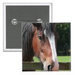 Imagen de un Pin cuarto del cuadrado del caballo
