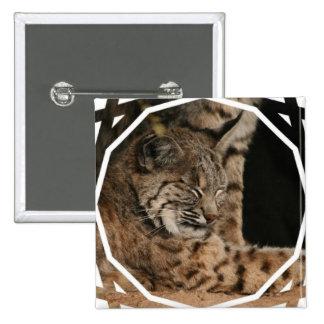Imagen de un Pin del cuadrado del lince
