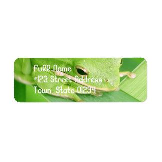 Imagen de una etiqueta de correo de la rana etiquetas de remite