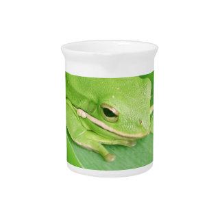 Imagen de una jarra de la rana arbórea