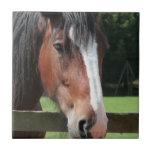 Imagen de una teja o de un Trivet cuarta del cabal