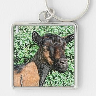 imagen del animal de la cabra de la gama del llaveros