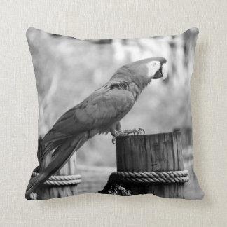 imagen del animal del bw del pájaro del macaw cojín decorativo