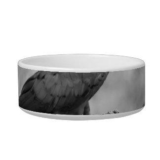 imagen del animal del bw del pájaro del macaw tazón para comida gato