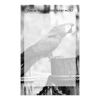 imagen del animal del bw del pájaro del macaw papeleria