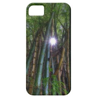 Imagen del bambú de Dave Lee del caso de Iphone 5 iPhone 5 Funda