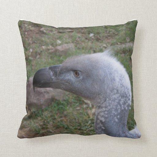 Imagen del buitre en la almohada