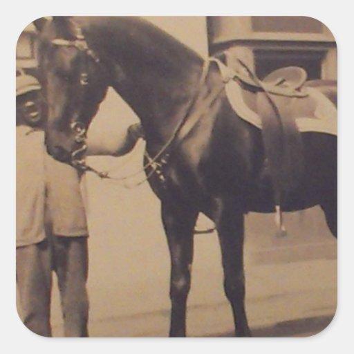 Imagen del caballo del vintage calcomania cuadradas