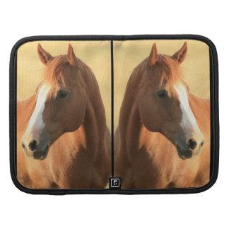 Imagen del caballo organizador