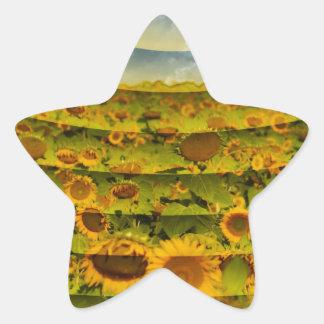 Imagen del campo del girasol pegatina en forma de estrella