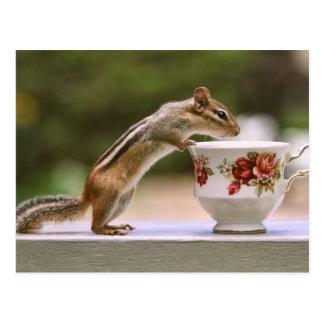 Imagen del Chipmunk con la taza de té de China Tarjeta Postal