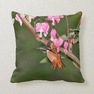 Imagen del colibrí y de las flores cojines