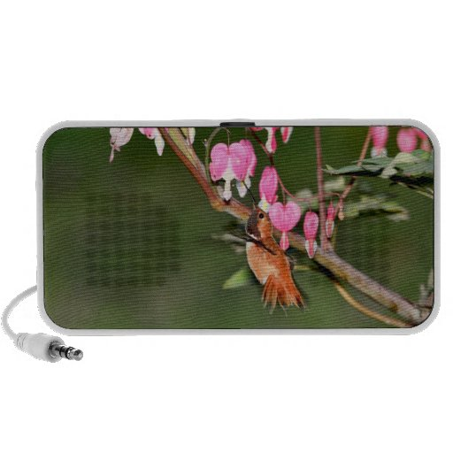 Imagen del colibrí y de las flores laptop altavoz