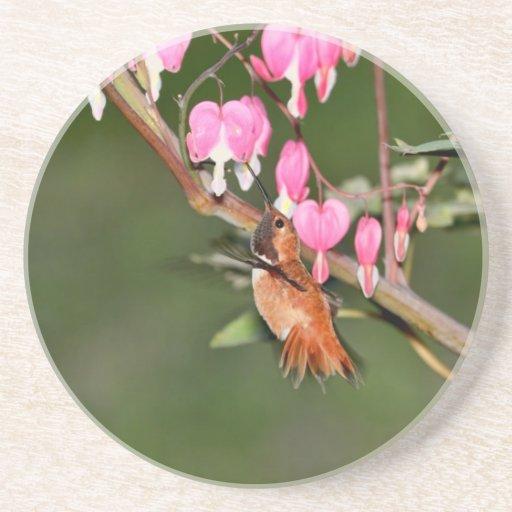 Imagen del colibrí y de las flores posavasos personalizados