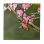 Imagen del colibrí y de las flores teja  ceramica