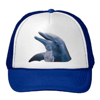 Imagen del delfín gorro