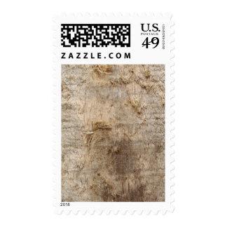 Imagen del Driftwood Imagen de la madera resistid Sellos