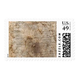 Imagen del Driftwood Imagen de la madera resistid Franqueo