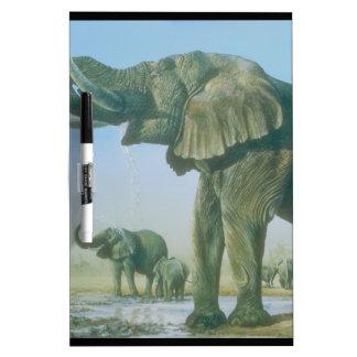 imagen del elefante pizarras