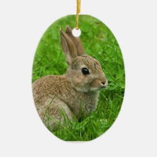 imagen del Europeo-conejo para el ornamento oval Adorno Ovalado De Cerámica