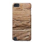 Imagen del fósil de madera