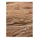 Imagen del fósil de madera postal