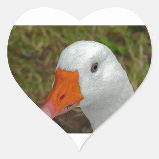 Imagen del ganso pegatina en forma de corazón