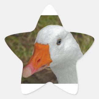 Imagen del ganso pegatina en forma de estrella