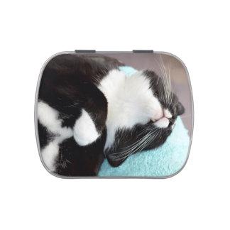 imagen del gatito de la opinión de la barbilla del latas de dulces