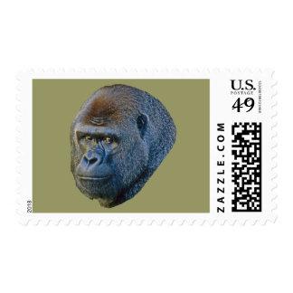 Imagen del gorila sellos